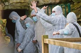 Visita a la Cueva original de Altamira