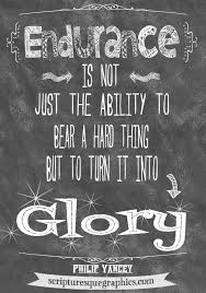 Endurance Quotes Unique 48 Endurance Quotes 48 QuotePrism
