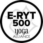 Afbeeldingsresultaat voor e-ryt 500