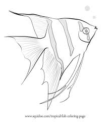Small Picture Angel Fish Funny Coloring Coloring Pages