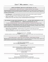 Award Winning Resume Templates Fascinating Ceo Resume Pdf Beneficial Winning Resume Templates Free Letter