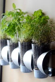 Kitchen Herb Garden Planter Inspiring Low Budget Unique Ideas For Herb Containers Eco Snippets