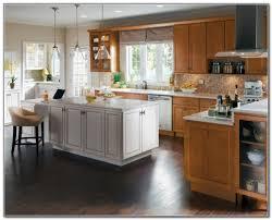 Home Decor Closeouts Creative Closeout Kitchen Cabinets 2017 Home Interior Design
