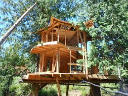 Image of: Prefab Treehouse Kits For Sale
