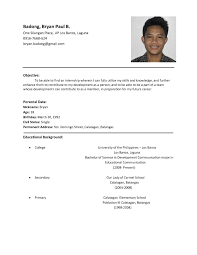 A Simple Cv For Job Sample Of Resume Examples Format In Example