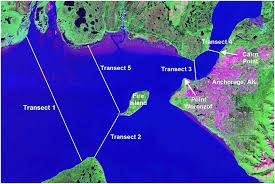 Beluga Point Tide Chart Hydrodynamics Of Knik Arm Modeling Study Journal Of