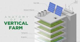 Image result for vertical farming
