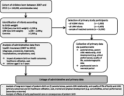 Flow Chart Of Primary And Secondary Data Early Comprehensive Care Of Preterm Infants Effects On