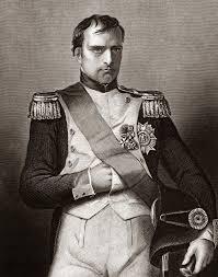 napoleon bonaparte hero or tyrant essay custom paper academic service napoleon bonaparte hero or tyrant essay