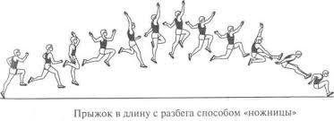 Эволюция техники прыжков в длину реферат cкачать Эволюция техники прыжков в длину реферат