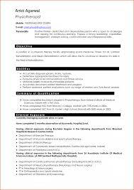 is resume help job resumehow to write professional cv how is resume help job resumehow to write professional cv how write how write resume
