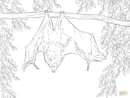 Small Picture bat coloring pages preschool Archives Best Coloring Page