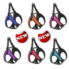 Gooby Size Chart Gooby Escape Free Easy Fit Dog Harness