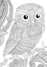 Free Owl Coloring Pages Cute Owl Coloring Pages Free Owl Adult