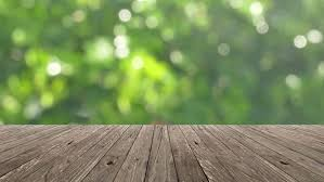 outdoor woods backgrounds. Blurred Outdoor Backgrounds Summer Woods  Table Top And Blur Nature Of Background Stock Outdoor Woods Backgrounds S