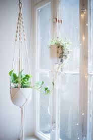 Hanging Planters Best 25 Indoor Hanging Planters Ideas On Pinterest Hung Vs