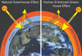 green house effect modern atmosphere time scavengers