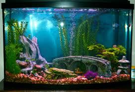 Mario Brothers Aquarium Decorations Super Mario Fish Tank Decorations Wnyhockeyreport Decor Site