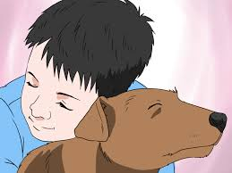 how to convince your parents to let you have a pet steps