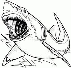 Small Picture Shark Printable Coloring Pages qlyviewcom