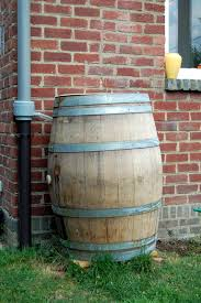 picture of collect rain water with a wine barrel