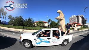 polar bear air conditioning. Perfect Air On Polar Bear Air Conditioning H