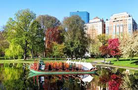 swan boats on the boston public garden