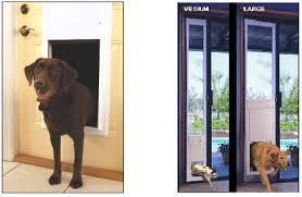 decorative dog doors. Plexidor Electronic Dog Door · High Tech Automated Power Pet Decorative Doors