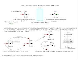 Amino Acid Chart Impressive A44 Amino Acid Stereochemistry Biology LibreTexts