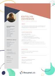 Professional Resume Templates 2013 Free Resume Templates Download Start Making Your Resume