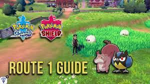 Pokemon Sword and Shield Route 1 Guide - Brilliant Pokemon & Wild Encounter  Mechanics - YouTube