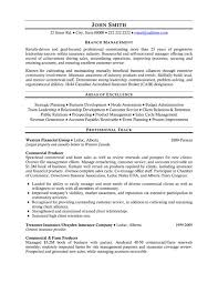Farm Manager Resume Delectable Top Insurance Resume Templates Samples
