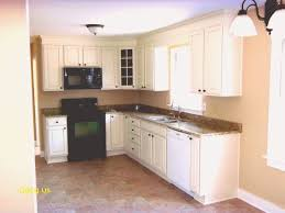 Small L Shaped Kitchen Design Ideas Simple Design Ideas