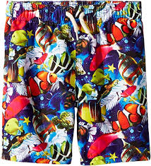 Reef Kids Size Chart Amazon Com Appaman Kids Baby Boys Allover Fish And Reef