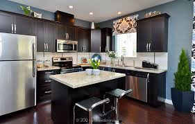 granite countertops dark cabinets stainless steel appliances H
