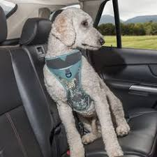 just order this amazing harness kurgo dog s muted fl dog harness 12 00