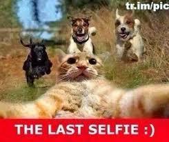 Funny-pics.jpg via Relatably.com