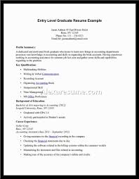 profile summary in resume for freshers profile summary example resumes ideal vistalist co