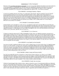 essay a examples template essay a examples