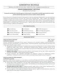 Senior Management Resume Samples Change Manager Change Manager ...