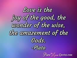 Wise Love Quotes Unique Love Is The Joy Of The Good The Wonder Of The Wise The Amazement