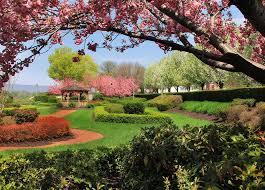 trees at sunken gardens on riverfront park
