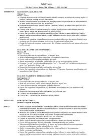 Realtor Resume Sample Realtor Resume Samples Velvet Jobs 13