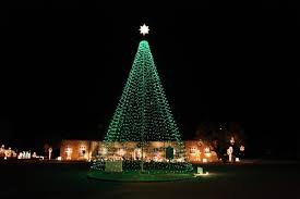 Amazing Decoration Flagpole Christmas Tree Kit Multicolor Uncommon ...