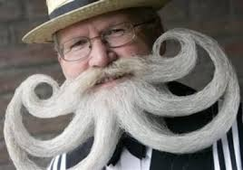 Image result for Blonde beards grow faster than: darker beards.