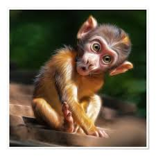 Premium Poster Baby Monkey