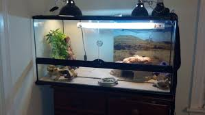 you can see i have a 75 watt basking light over the basking spot a 50 watt basking light on the other side of the cage for ambient heat this winter