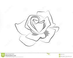 Disegni Di Una Rosa Migliori Pagine Da Colorare