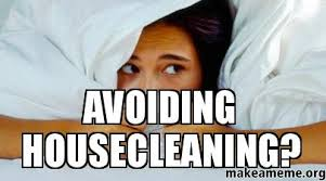 Image result for cleaning house memes