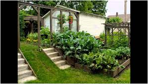 Small Picture Small Backyard Vegetable Garden Layout U Home Design And